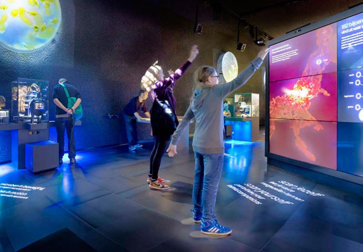 Afbeelding kan het volgende bevatten: een of meer mensen, staande mensen en dansende mensen